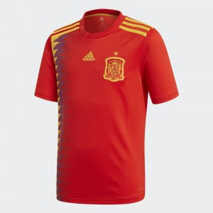 Camiseta de SPAIN 2018 Home Juventud