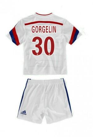Camiseta de Dinamarcade la Seleccion 2013/2014 Primera