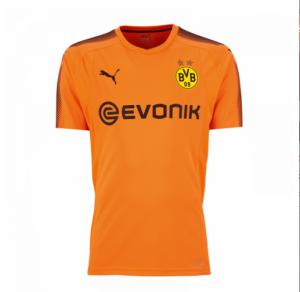 Camiseta Portero nueva del Borussia Dortmund 2017/2018